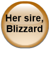 Her sire, Blizzard